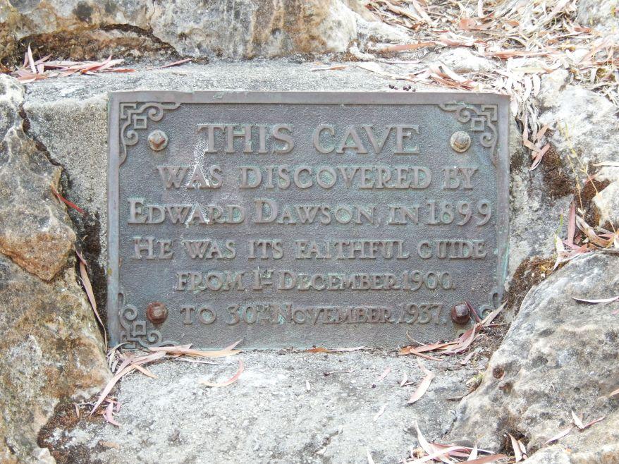 DSCN3369
